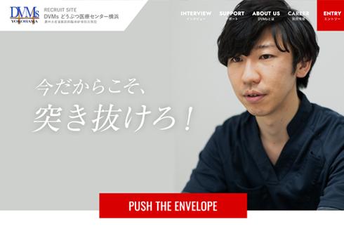DVMsどうぶつ医療センター横浜 採用サイト